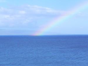 Maui 608 Rainbow