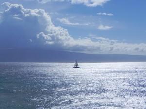 Maui 608 Sailboat